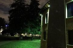 Night-view-green-hue